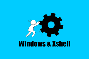 Windows 使用 Xshell 软件连接 Vultr VPS 教程