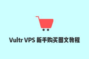 2021最新Vultr VPS注册及购买图文教程,使用支付宝/微信进行支付